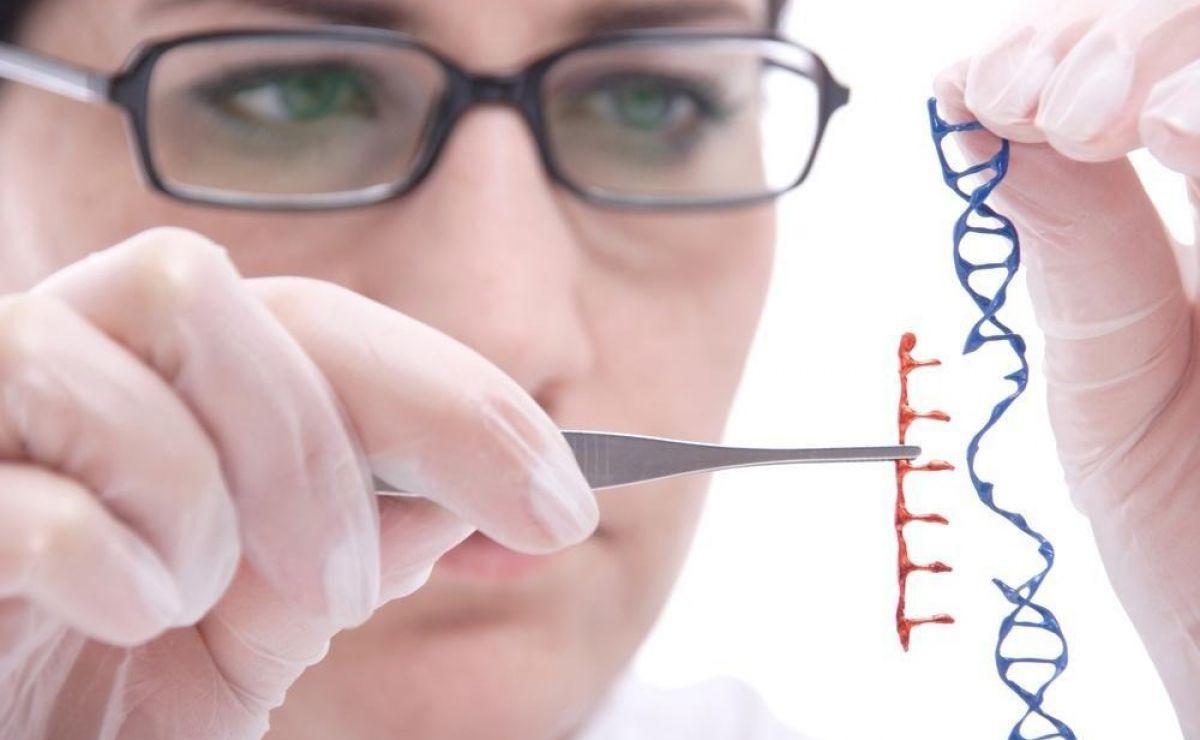 Matičnе ćelije 100% uspešne u lečenju beba sa smrtonosnom mutacijom gena
